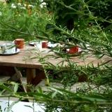 Herb garden cups