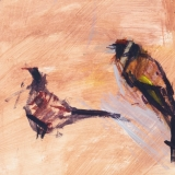 Goldfinch and pheasant